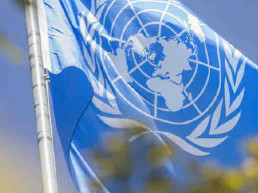 The United Nations Foundation